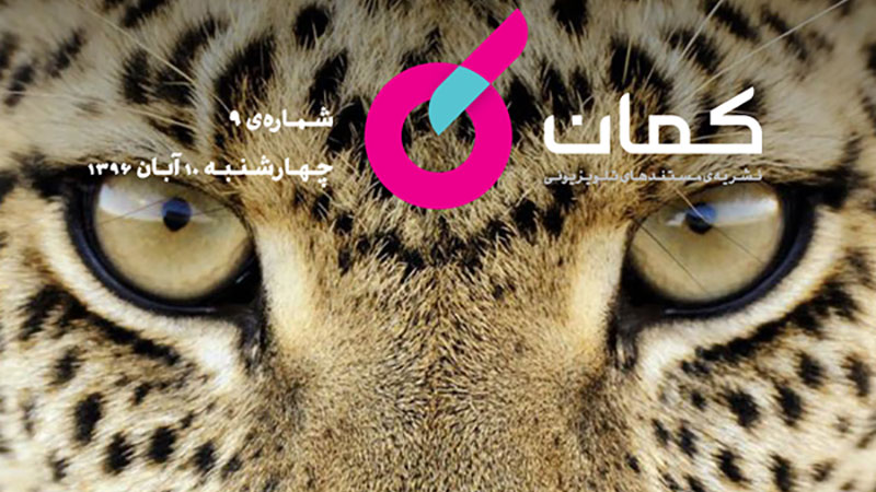 نشریه مستندهای تلویزیونی «کمان» – شماره ۹ / نگاهی به مستندهای «گربه های ناآرام» و «سپیده»