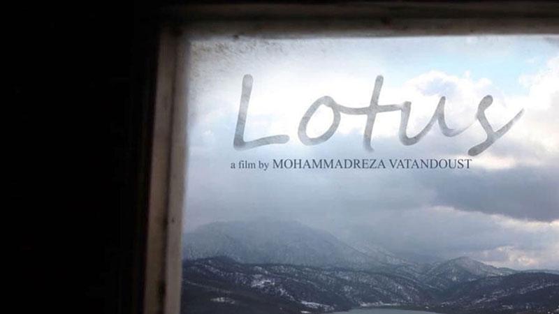 راهیابی مستند «لوتوس» به جشنواره بینالمللی سینما و طبیعت «ForadCamp» اسپانیا