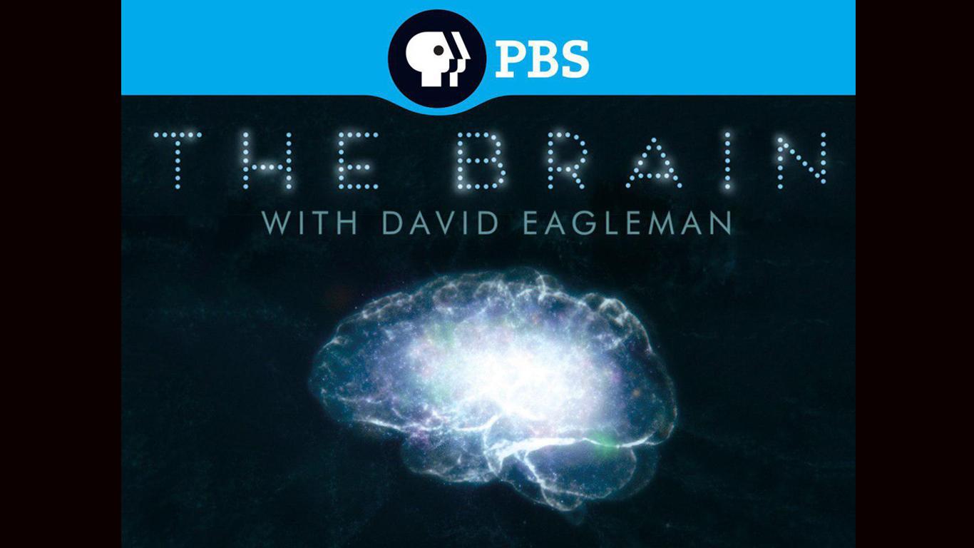مستند علمی و جذاب «داستان مغز با دیوید ایگلمن» برای اولین بار از شبکه 4