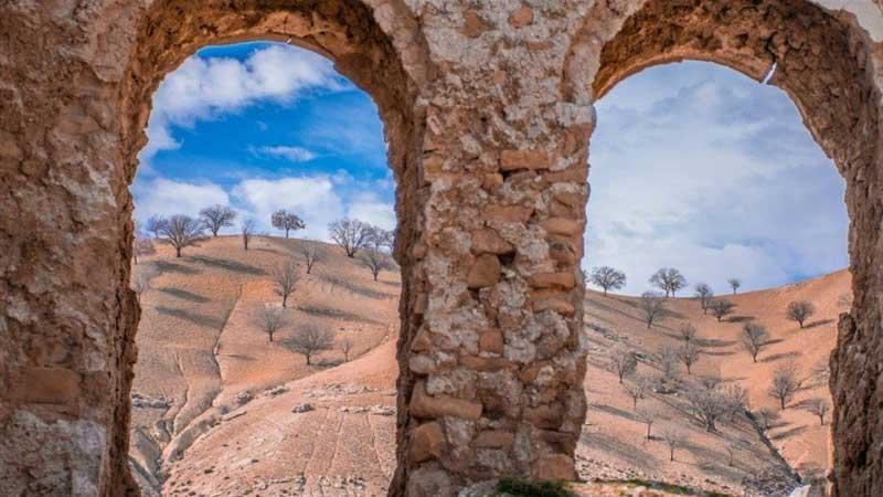 طبیعت بکر جنوب ایران در قاب مستند «سرزمین مهربان»