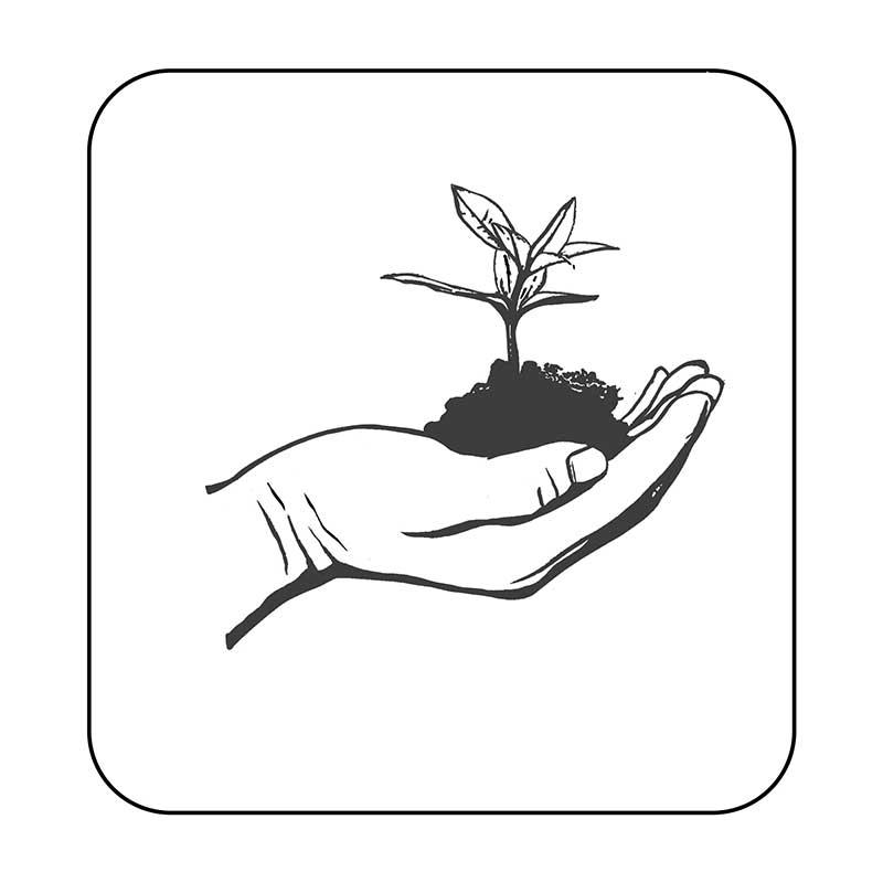 مستند محیط زیست